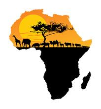 African Animals Over Map Of Africa. Safari Sunset. Savanna Wildlife Animals. Big Five Under Acacia Tree. Travel Invitation Card For Africa Nature.