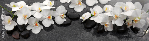 White orchids flowers and spa stones .