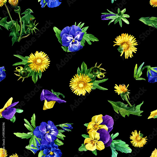 bezszwowy-wzor-dandelion-fiolki-i-kwiaty-malujacy-w-akwareli