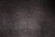 Texture Reptile Skin Backgroun...