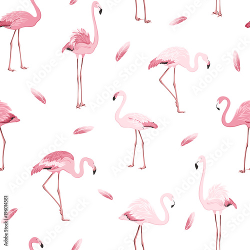 Canvas Prints Flamingo Exotic pink flamingos colony flamboyance flock feather seamless pattern on clean white background. Wading bird species realistic detailed vector design illustration. Vector design illustration.