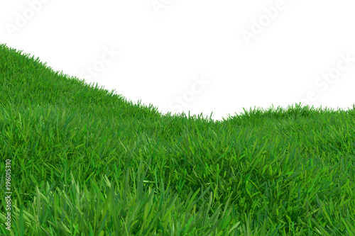 Fotobehang Groene Green grass growing on hills with white background top view. 3d rendering.