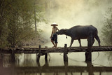 Thai farmer man with buffalo walking on the bridge for going  to field. - 196017549