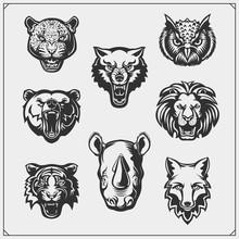 Vector Set Of Animals Head. Fox, Wolf, Tiger, Rhino, Bear, Owl, Leopard And Lion.