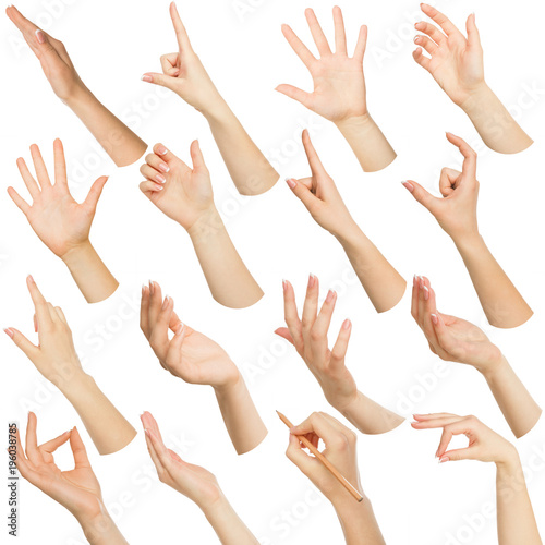 Set of white female hands showing symbols Wall mural