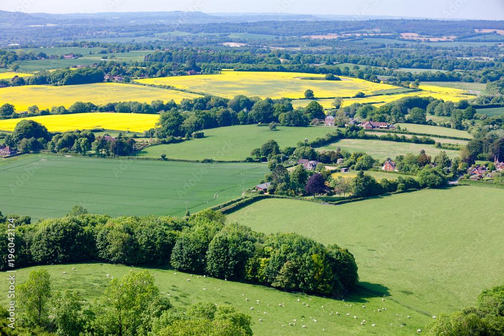 Fototapeta Summer rural landscape Southern England UK