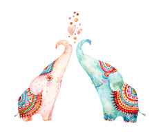 Watercolor Pair Of Lovely Elep...