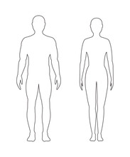 Male And Female Contour On White Background, Vector.