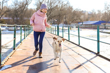 Woman Walking Cute Dog Outdoors On Winter Day. Friendship Between Pet And Owner