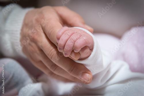 Mano di un adulto che sorregge la mano di un neonato Canvas Print