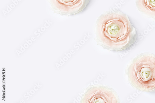 Fotobehang Bloemen Styled stock photo. Feminine desktop mockup with blush pink buttercup flowers, Ranunculus, on white table background. Flat lay, top view. Floral pattern. Picture for blog, social media.