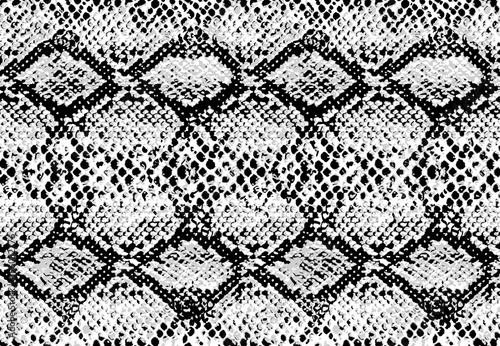 Poster Artificiel Snake skin pattern texture repeating seamless monochrome black & white. Vector. Texture snake. Fashionable print. Fashion and stylish background.