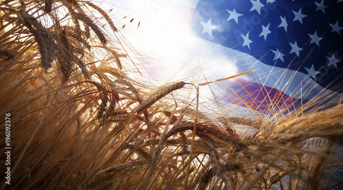 Tableau sur Toile Flag of USA over wheat field