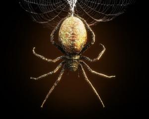 Abstrakcjonistyczny zbliżenie ogromny pająk dynda od swój sieci. Renderowania 3d
