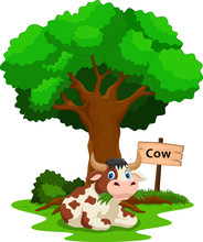 Funny Cow Under A Shady Tree With A Sign The Identity