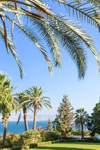 Israel, Galilee. Mount Of Beat...