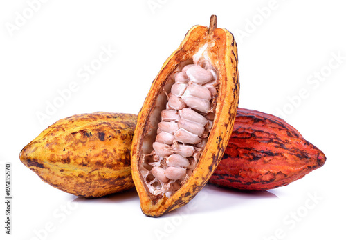 Fotomural Fresh cacao pods isolated on a white background