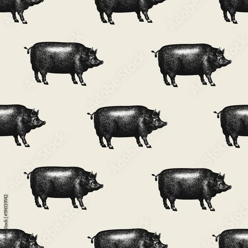 Fototapeta Seamless farm vector pattern