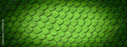 Tablou Canvas 爬虫類のうろこ