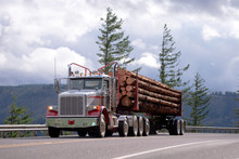Big Rig Semi Truck With Day Cab Transporting Logs On The Road