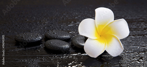 Spoed Foto op Canvas Frangipani Spa still life with plumeria flower