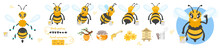 Bee Cute Character For Animation