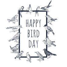 Set Of Hand Drawn Birds. Passerine.