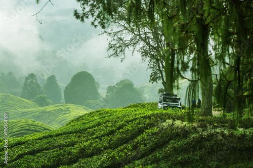 Traveling in the green mountains with off road vehicle Wallpaper Mural