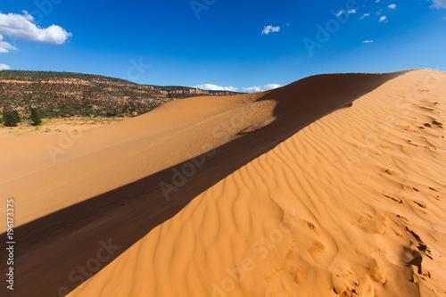Poster de jardin Desert de sable Coral Pink Sand Dunes 3