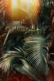 Deep dark green palm leaves pattern with bright orange sun flare effect. Creative layout, toned, vertical