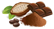 Cacao Beans With Chocolate Tab...
