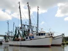Commercial Shrimp Boat Netters Docked