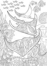 Coloring Page For Adult Colour...