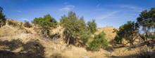 Panorama Of Walking Trail Leading Through Canyons Of Santa Clarita California.