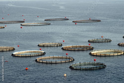 The aquaculture settlement or fish-farming around the bays of Kalymnos island Canvas Print