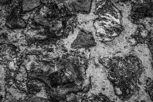 In de dag Stenen Old wall made of natural stone texture background