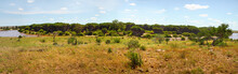 High Resolution Tsavo East Nat...