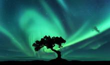 Aurora Borealis And Silhouette...