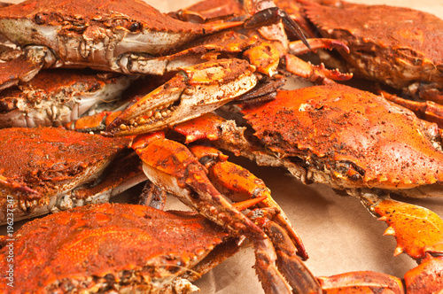 steamed blue claw crabs / Top view of  five freshly steamed blue claw crabs covered with spicy old bay seasoning, cooling on a sheet of brown paper