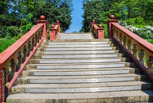 Recess Fitting Bamboo The stair in Hanley Park 2