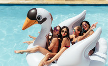 Friends Enjoying On A Inflatable Swan In Pool