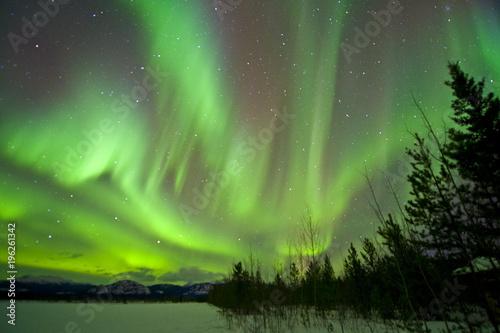 In de dag Noorderlicht Aurora Borealis, Yukon, Canada