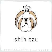 Dog Breed Collection : Vector ...