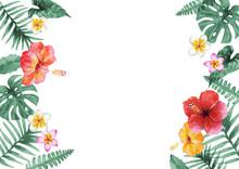 南国 ハワイ 植物フレーム 水彩 イラスト