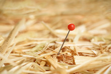 Closeup Of A Needle In Haystack