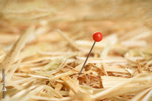 Fototapeta Closeup of a needle in haystack