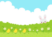 Cute Chicks Walking On The Grass And Cute Rabbit Hiding Behind The Bushes