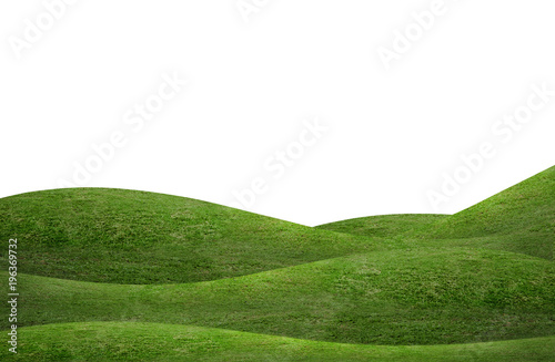 Poster Blanc Green grass hill background isolated on white. Outdoor of green meadow background.