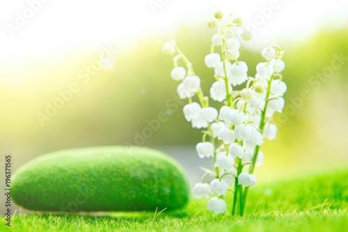 Poster Muguet de mai Lily of the valley. Garden flower with beautiful smell
