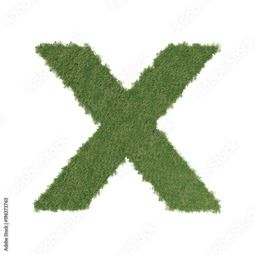 Foto op Canvas Wereldkaart Alphabet X made of green tree on white background. 3D illustration